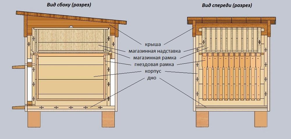 устройство улья для пчел